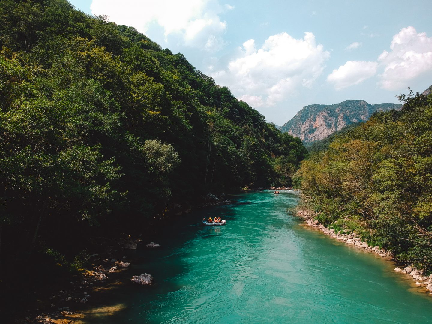 Stop at the Tara river on our holidays through the Balkans